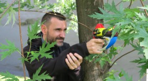Francesco Artibani si diverte con il Pk Blaster, il gadget esclusivo componibile acquistando i 5 numeri di Luglio di Topolino